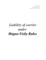Реферат 'Liability of Carrier Under Hague-Visby Rules ', 1.