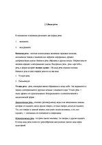 Язык и речь Функции и виды речи Реферат id  Реферат Язык и речь Функции и виды речи 5